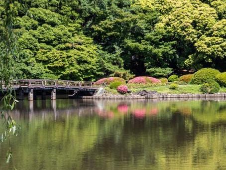 Японские сады, которые должны посетить все любители природы