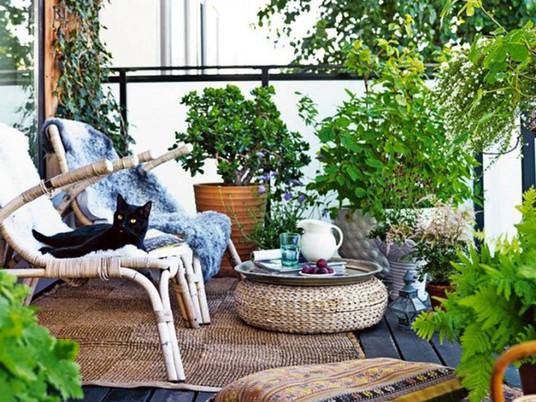Городской оазис: невероятный сад на балконе