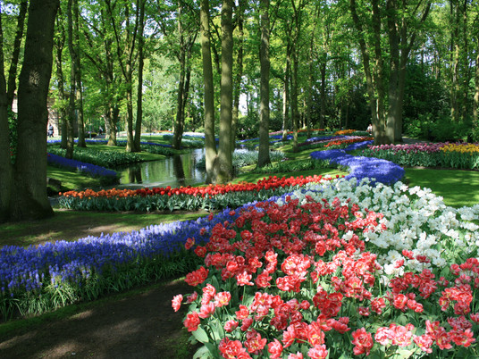 Идеи для сада родом из Нидерландов