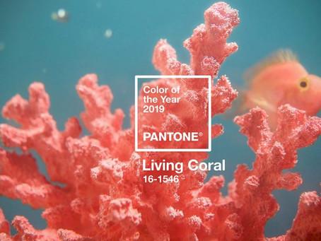 Living Coral - официальный оттенок Pantone в 2019 году