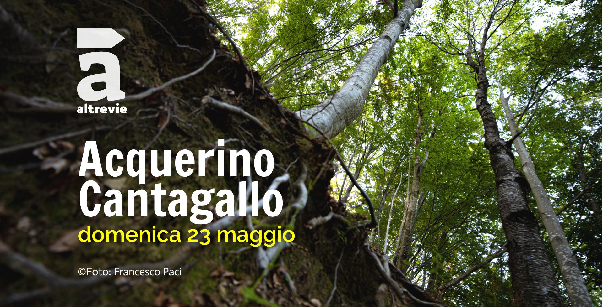 AcquerinoCantagallo_2020 (1).jpg