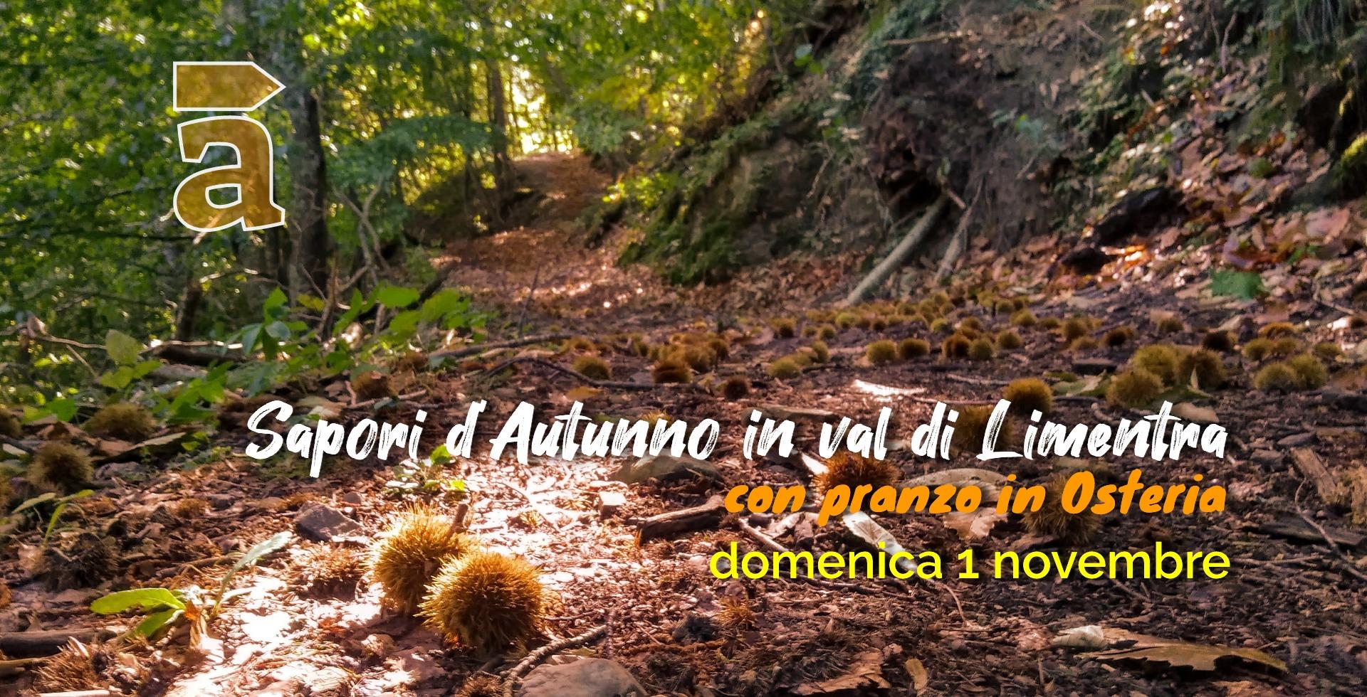 Autunno_Limetra_2020.jpg