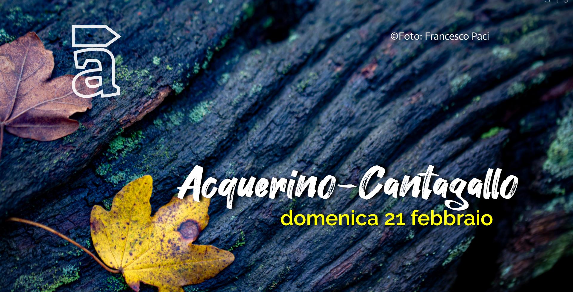 AcquerinoCantagallo_2020 (2).jpg