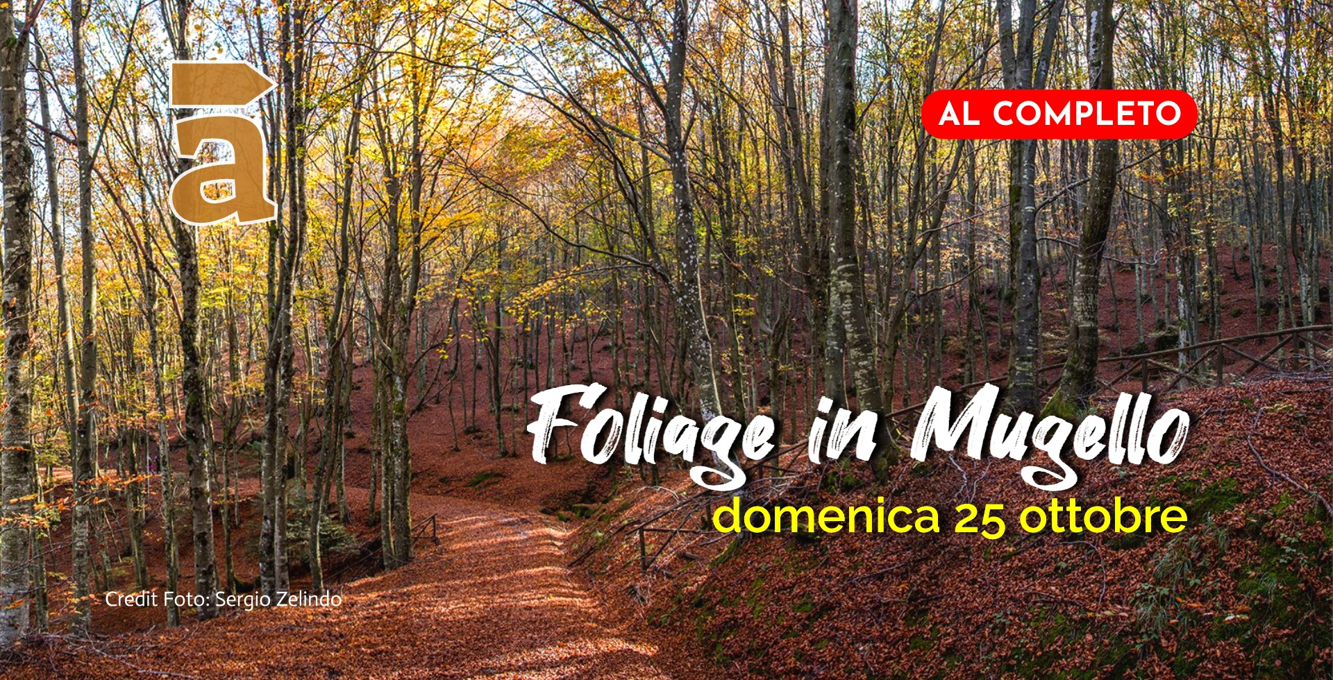 Foliage in Mugello_2020_soldout.jpg