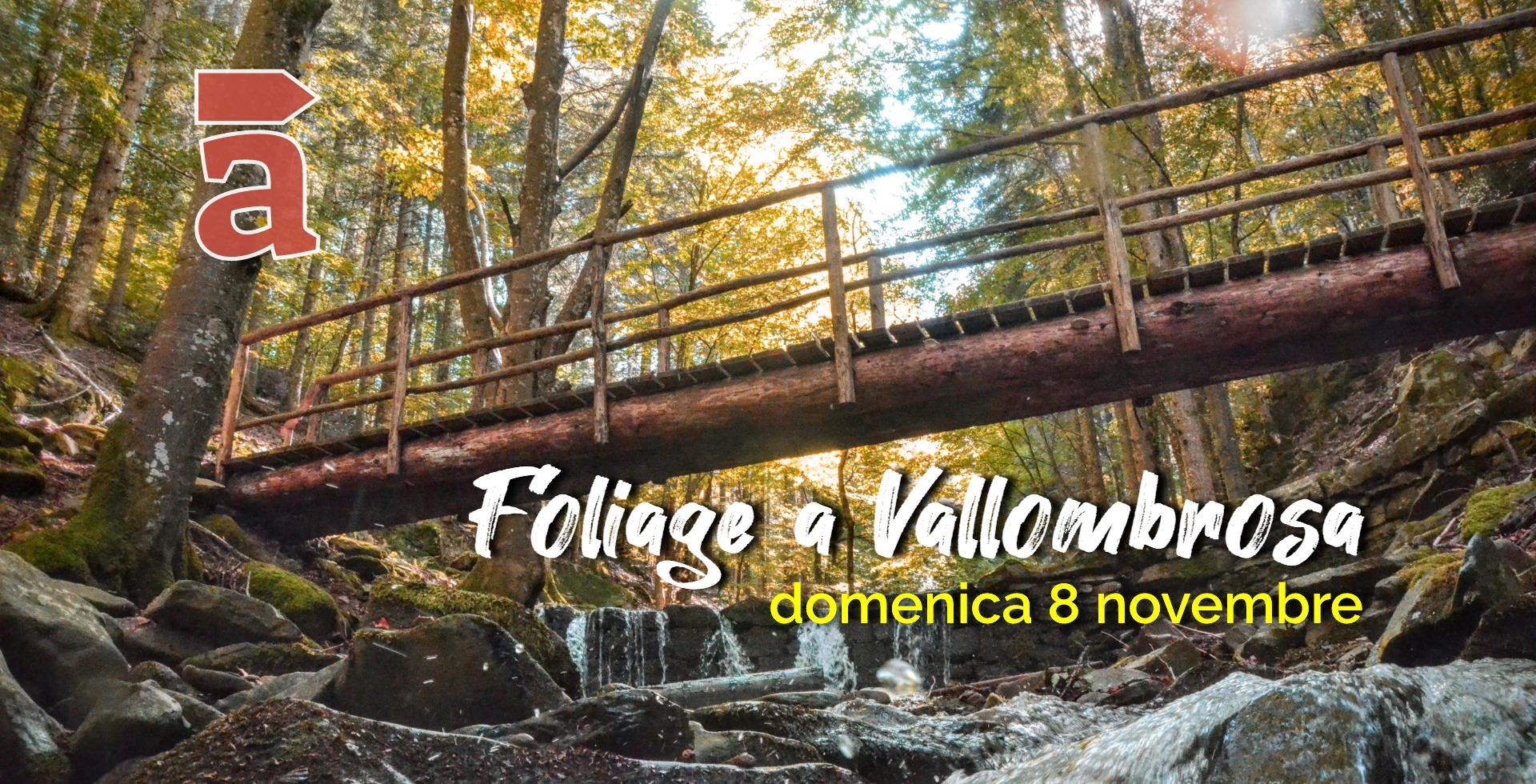 Foliage Vallombrosa_2020.jpg