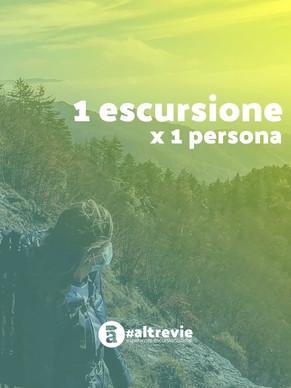 Regalo_Gift_1Ex1.jpg