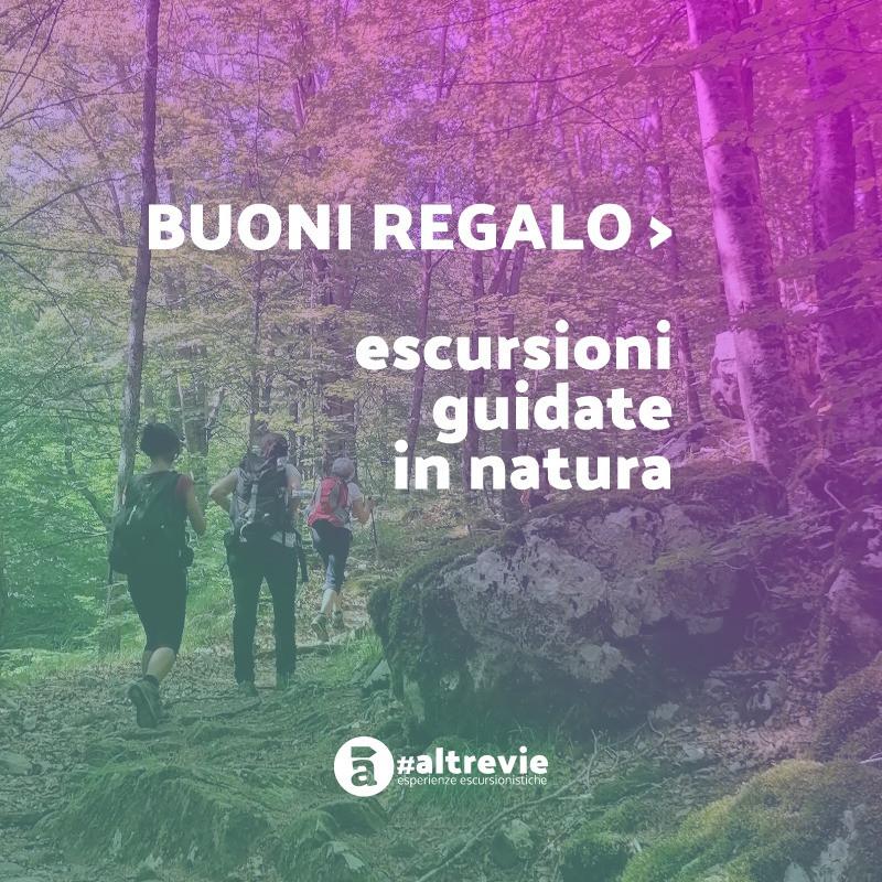 Regalo_Gift_copertina.jpg