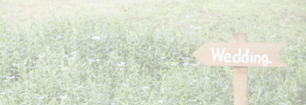 Wedding%2520Sign_edited_edited.jpg