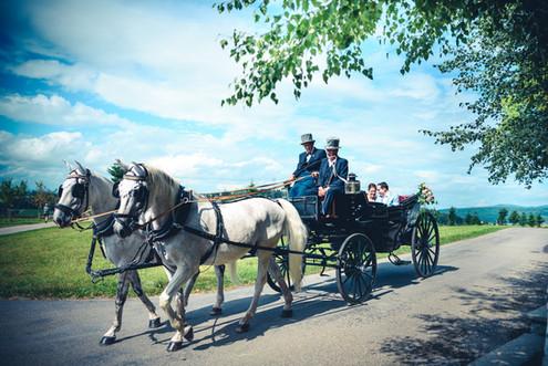 Routscher_ Hochzeitsbilder_-_DSC1510.jpg