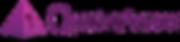 Quantum-Success-Logo-1.png