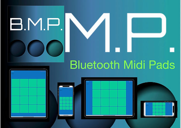 bmp1.0.jpg