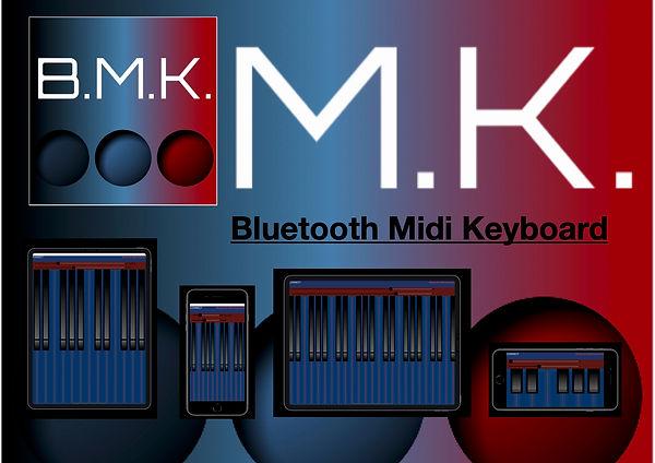 bmk1.1.jpg
