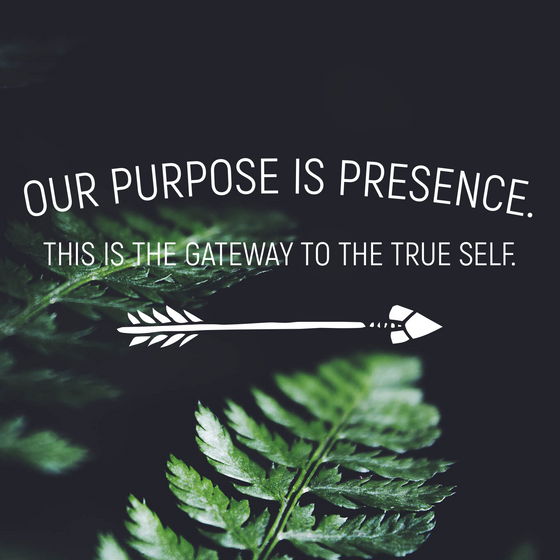 The purpose is NOW