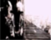 Screen Shot 2018-04-30 at 8.41.19 PM.png