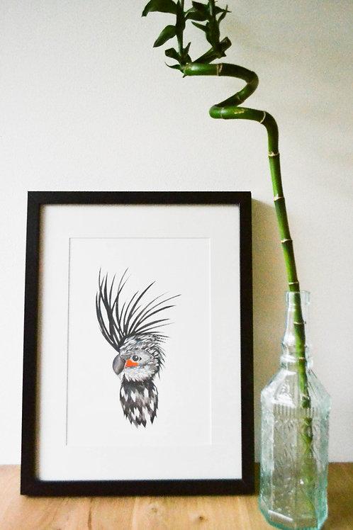 Blackbird A4