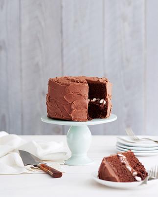 CHOCOLATE CAKE - EVERYDAY LITTLE CAKES