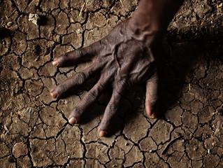 Soil: It's alive!