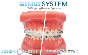 Photo Genius System.jpg