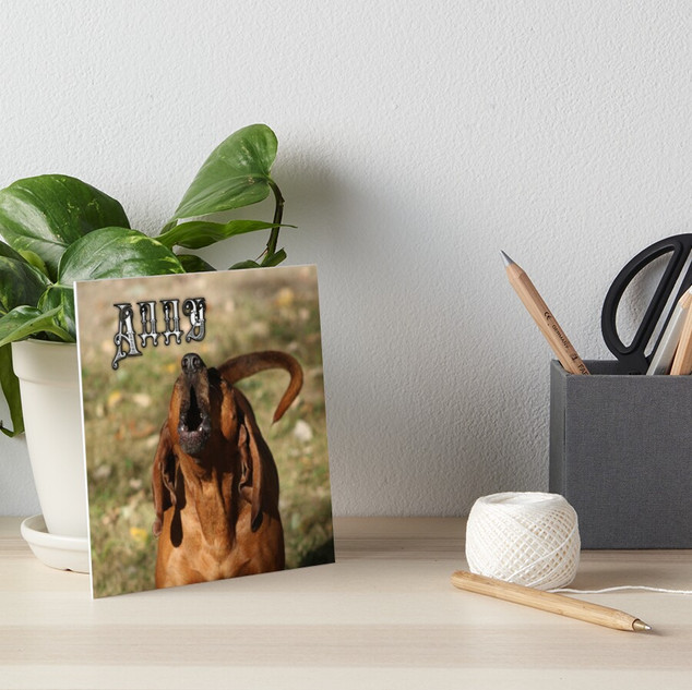 Pet Photography Art and Prints