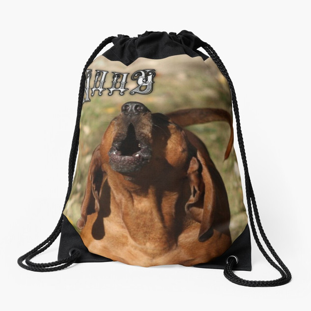 Pet Photography Drawstring Bag
