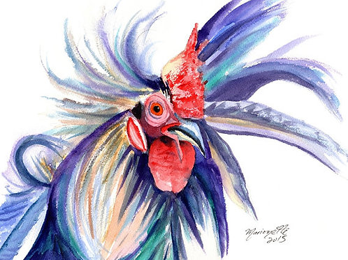 """""""Crazy Rooster"""""""