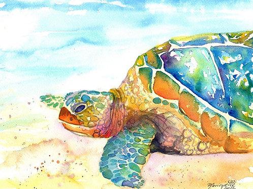 """""""Rainbow Sea Turtle"""""""