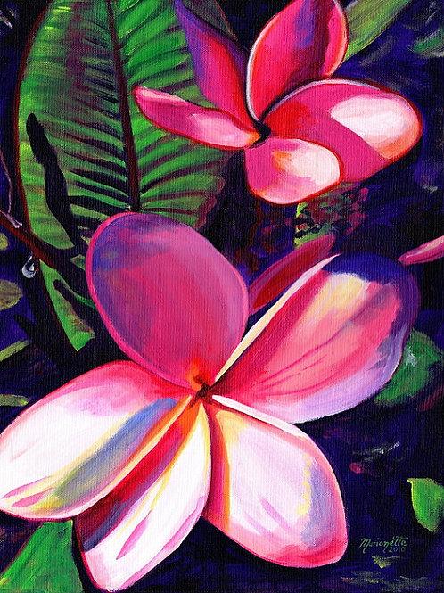 """ALOHA"" Pink Plumeria"