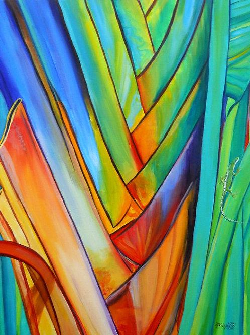 """""""Giant Rainbow Heliconia"""""""