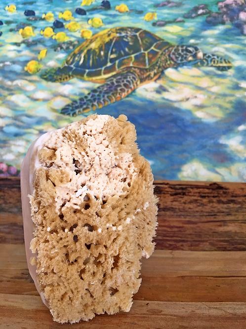 Peppermint - Sea Sponge Soap