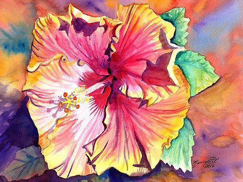 """Tropical Hibiscus 13"""