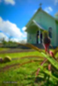 Hawaiian Church Hawaiian Soap Company Julie Manley