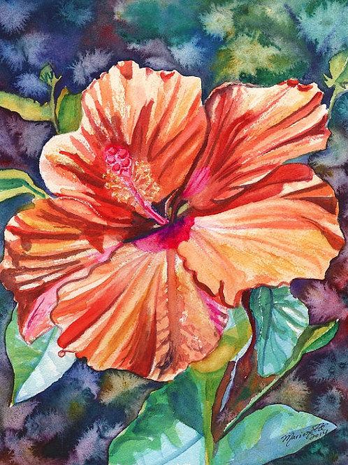 """Tropical Hibiscus 5"""