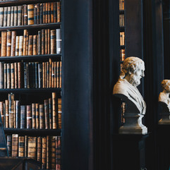 Bookcases, Busts, Dark Colors