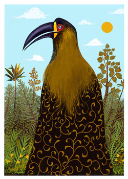 The Hornbill Princess