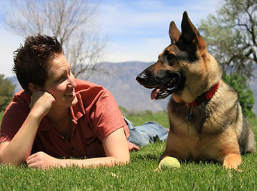 Arie & Sarge, Positive dog training