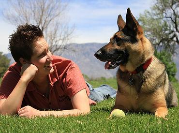Arie & Sarge, Positive dog training