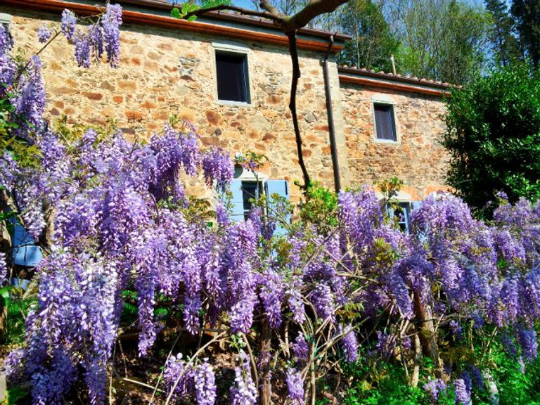 Tananei Farmhouse B&B Marliana close to Montecatini Terme Pistoia Lucca Firenze Tuscany