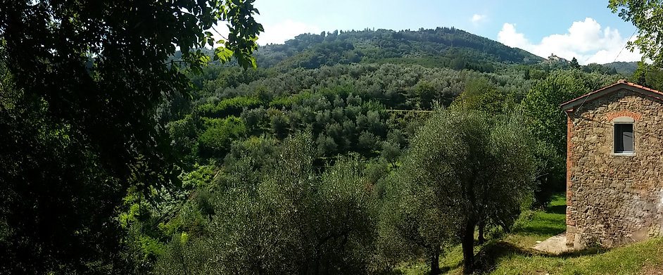 Tananei agriturismo B&B Marliana vicino a Montecatini Terme Pistoia Lucca Firenze Toscana