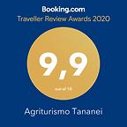 Tananei awards 2020.png