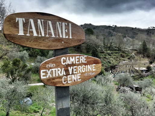 Agriturismo Tananei - tra Lucca e Firenze