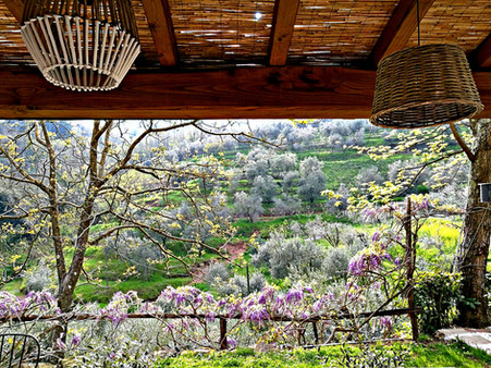 Agriturismo Tananei - Valdinievole Toscana