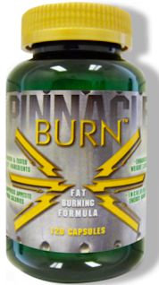 Burn Pinnacle Sports FREE with Purchase (code: Burn)