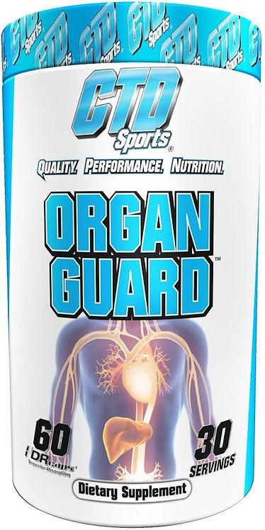 CTD Sports Organ Guard