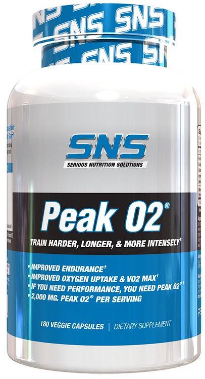 SNS Peak02