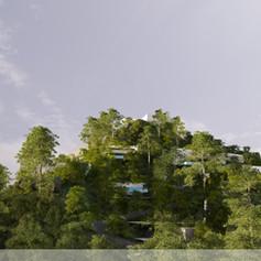web-sey-general-view-3jpg