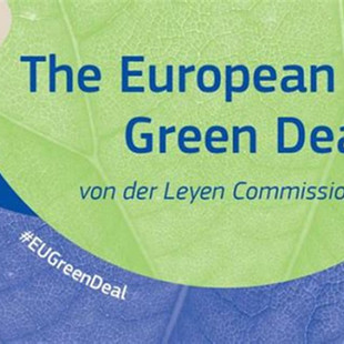 The European Green Deal: How Brands Can Play a Part