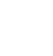 SafeFlex-Shield-White.png