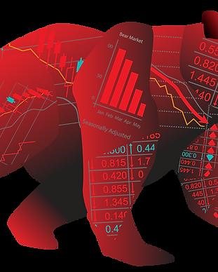 Bear-stocks.png