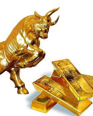 15.-Gold-Bull.jpg