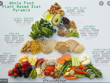 Plant-based diets and Cardiovascular health